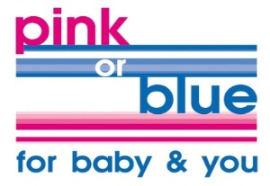 Pink or Blue -  Breast Pump Hire